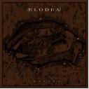 ELODEA - Voyager LP